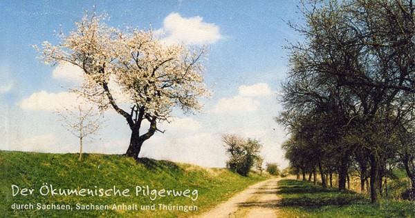 Der Ökumenische Pilgerweg